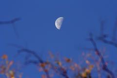 jesienią księżyca Zdjęcie Royalty Free