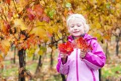 jesienią, mała dziewczyna Obraz Royalty Free