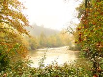 jesienią mgła. Zdjęcie Stock