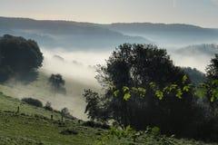jesienią mgła. Obraz Royalty Free
