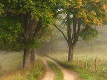 jesienią mgłowa road Fotografia Royalty Free