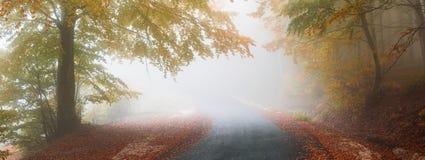 jesienią mgłowa road Zdjęcia Stock