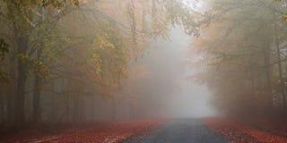 jesienią mgłowa road Obraz Royalty Free