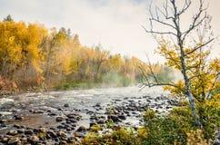 jesienią objętych trawy green zostało czerwoną rano Fotografia Stock