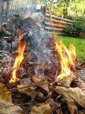 jesienią ogniska ogród Obrazy Royalty Free