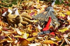 jesienią ogrodnictwo obrazy stock