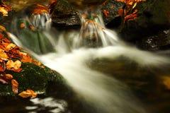 jesienią olbrzymi strumień góry Zdjęcie Royalty Free
