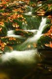 jesienią olbrzymi strumień góry Obrazy Stock