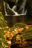 jesienią olbrzymi strumień góry Obraz Stock