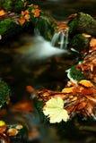 jesienią olbrzymi strumień góry Zdjęcie Stock