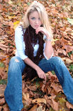 jesienią piękno Zdjęcia Royalty Free