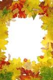 jesienią rama obraz royalty free