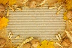 jesienią rama obrazy stock