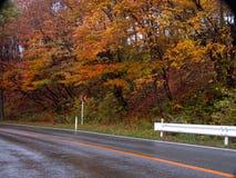 jesienią road Obrazy Royalty Free