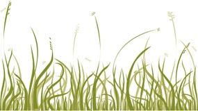 jesienią trawy Zdjęcie Royalty Free