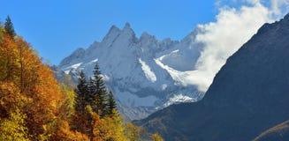 jesienią trawy nawet zielony zostaw pomarańczową cichą widok pogodę Obrazy Stock