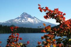 jesienią ustalenia jeziora zagubiony obraz stock