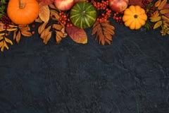 jesienią zbliżenie kolor tła ivy pomarańczową czerwień liści zdjęcie stock