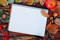jesienią zbliżenie kolor tła ivy pomarańczową czerwień liści Fotografia Stock
