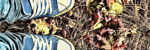 jesienią zbliżenie kolor tła ivy pomarańczową czerwień liści Nogi młoda kobieta w błękitni sneakers Obraz Royalty Free