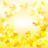 jesienią zbliżenie kolor tła ivy pomarańczową czerwień liści również zwrócić corel ilustracji wektora Zdjęcia Stock