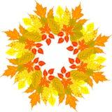 jesienią zbliżenie kolor tła ivy pomarańczową czerwień liści Wektorowy tło również zwrócić corel ilustracji wektora Kwiecisty wek royalty ilustracja