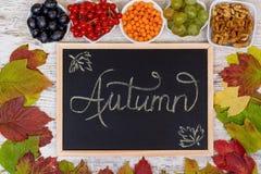 jesienią zbliżenie kolor tła ivy pomarańczową czerwień liści Zarząd szkoły z wpisową jesienią Jagody i liście viburnum, winogrona zdjęcie stock