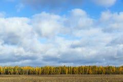 3 jesienią zrobić zdjęcie panoramiczna przyprawił natury Zdjęcie Stock