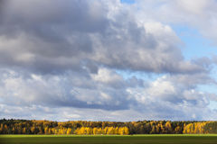 3 jesienią zrobić zdjęcie panoramiczna przyprawił natury Obraz Stock