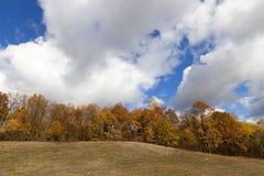 3 jesienią zrobić zdjęcie panoramiczna przyprawił natury Fotografia Stock