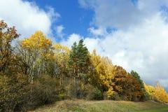 3 jesienią zrobić zdjęcie panoramiczna przyprawił natury Zdjęcia Royalty Free