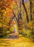 Jesieni ścieżka zdjęcie royalty free