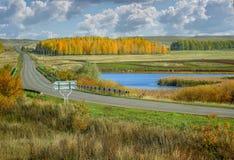 Jesieni żółtej brzozy lasy i jezioro Rosja sceniczna krajobrazowa droga w dolinie obraz stock