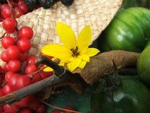 Jesieni żniwa natury pojęcie Spadku jagody, warzywa, kwiaty i liście, obrazy stock