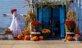 Jesieni żniwa pokaz wszystkie artykuły spadek Zdjęcie Stock