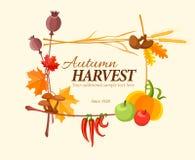 Jesieni żniwa rama dla dziękczynienie dnia Zdjęcie Royalty Free
