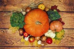 Jesieni żniwa warzywa: bania, banatka, jabłka, cebule, brokuły, czosnku odgórny widok Zdrowy jedzenie Na Drewnianym tle zdjęcie royalty free