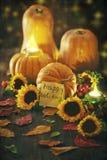 Jesieni żniwo obraz stock