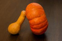Jesieni żniwo - banie i kabaczek Bani i zucchini rozmaitość Fotografia Stock