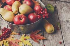 Jesieni żniwo i dziękczynienia karciany tło Fotografia Stock