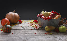 Jesieni żniwo i dziękczynienia karciany tło Obrazy Stock