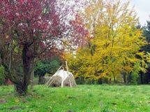 jesienią 12 park Obrazy Royalty Free