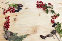 Jesieni acorns na drewnie i jagody zdjęcie royalty free