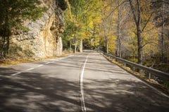 Jesieni asfaltowa droga z spadać żółtymi liśćmi Obraz Stock