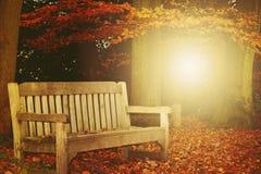 Jesieni ławka Obrazy Stock