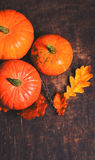 Jesieni bani dziękczynienia tła pojęcie - pomarańczowa bania Zdjęcia Stock
