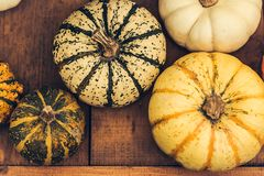 Jesieni bani dziękczynienia tło - pomarańczowe banie nad ośniedziałym tłem fotografia stock