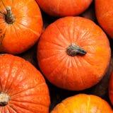 Jesieni bani dziękczynienia tło - pomarańczowy bani wallpap Zdjęcie Stock