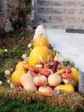 Jesieni banie Zdjęcia Stock