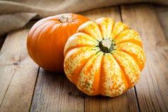 Jesieni banie Obraz Royalty Free
